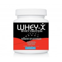 WHEY-X Vanilla (5Ibs)